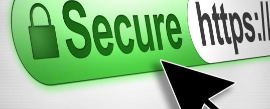 How To Stay Secure in an Internet Security Jungle